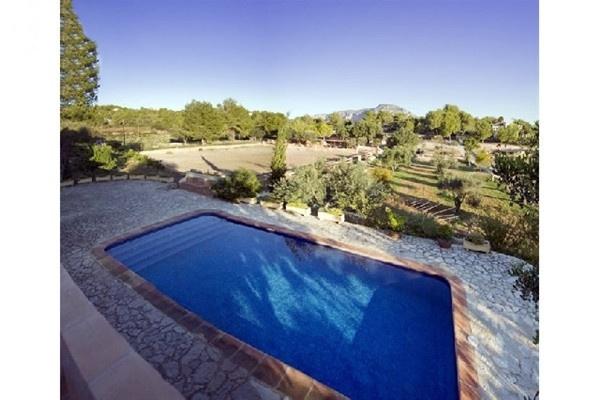Der große, paradiesische Pool