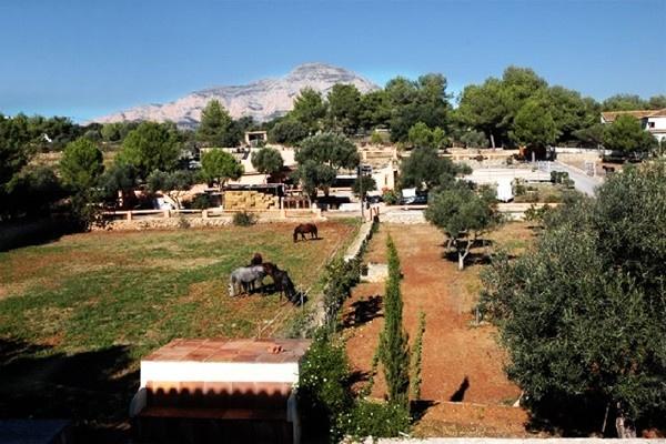 Das imposante Anwesen mit Reitplätzen und Pferdekoppeln