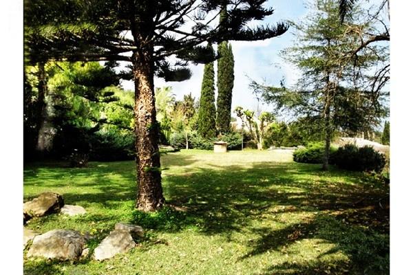 Der paradiesische Garten mit vielen Obstbäumen
