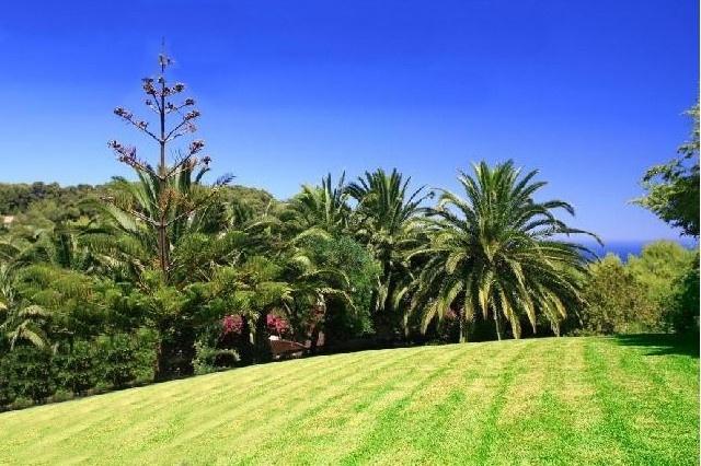 Die hinreißende Außenanlage mit gepflegten Grünflächen